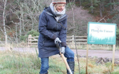 Forest Direct's Traquair Estate Planting Scheme Shortlisted for RSPB Nature of Scotland Awards