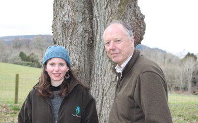 Plant The Future – Forestry & Timber News April 2021